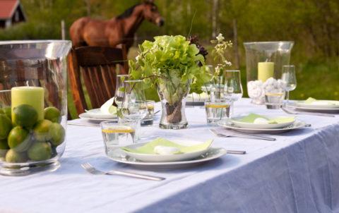 Dinner, Abendessen, Pferd