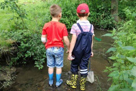 2019 Kindergarten Projekt Bach Titel