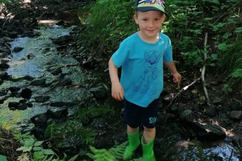 2020 Kindergarten Waldtag Titel