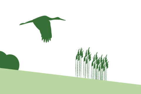 2020 Naturspaziergang Neudorf